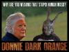 rsz_1donnie_dark_orange_edited-14.png